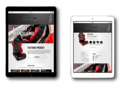 "<a href=""https://www.procarbyscat.com"">e-commerce design 