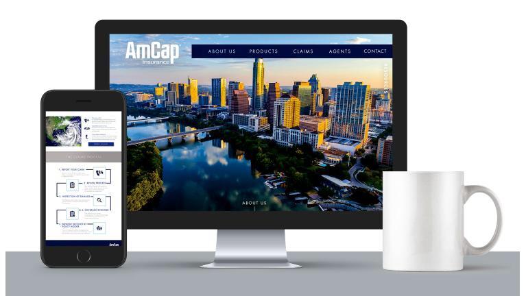 AMCAP INSURANCE WEBSITE DEBUT